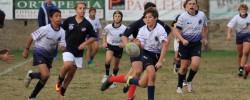 Under 14 Torneo Carpe metam